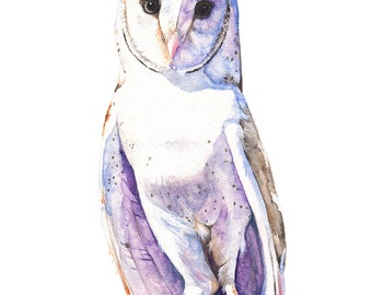 Barn Owl print of watercolor painting, A3 largest size, BO13116, Barn Owl watercolor painting, bird watercolor painting print