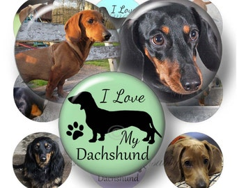 "Dachshund Dog, Digital Collage Sheet, 1 Inch Circles, Bottle Cap Images, 1"" Round Images, Instant Download, Printable Digital Download"