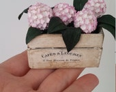 Pink hydrangea in a vintage box. Handmade. Plant for dollhouses at 1/12th scale