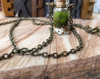 TINY TERRARIUM Necklace with live kentucky moss