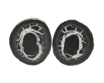 Septarian Ironstone Calcite Nodule Polished Stone Palm Talisman Dragon Gemstone Natural Organic Concretion African Gem Wear it or Display it