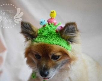 Pet Easter Chicks Beanie (XS-XL)
