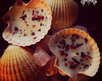 Venus Love Goddess Naturally Scented Sea Shell Soy Wax Candle
