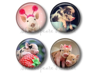 Pig Decor - Fridge Magnets - Pig Kitchen - 4 Magnets - 1.5 Inch Magnets - Kitchen Magnets