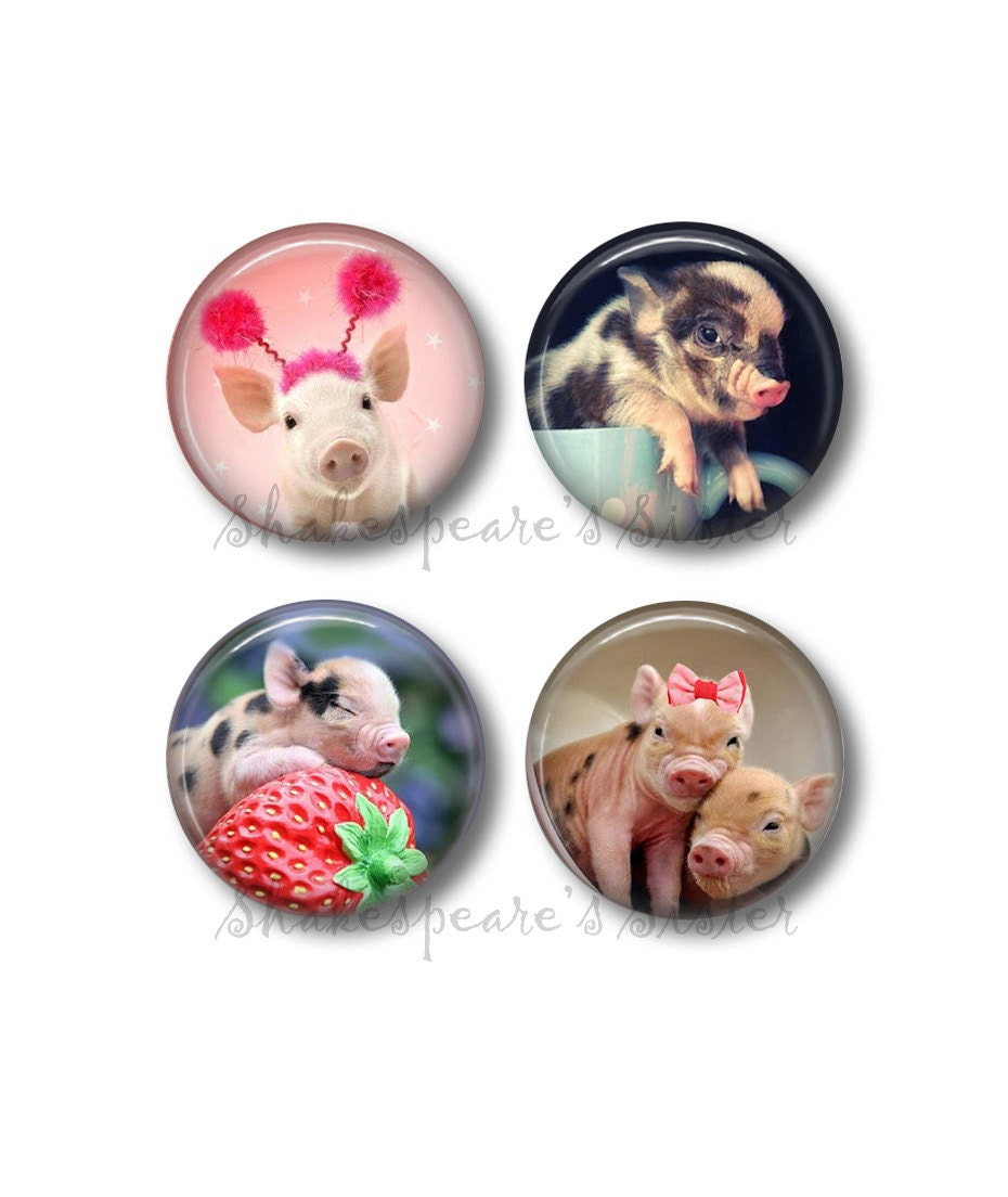 Pig decor fridge magnets pig kitchen 4 magnets 1 5 Pig kitchen decor
