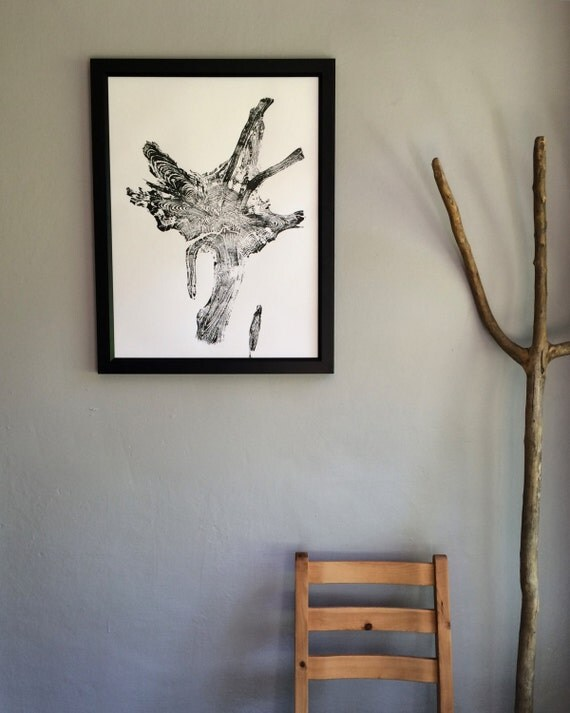 Real Tree Roots, Glacier National Park. Tree Ring Print, 18x24 inch, original woodblock, Tree root decor, Real tree roots, National parks