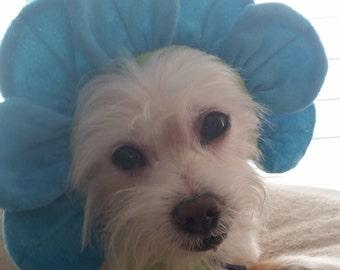 Halloween Dog Costume- Cat Costume- Accessory Flower- - Dog- Cat Flower Hat- Wedding Flower Girl- dress up. Pet accessories- Photo Prop
