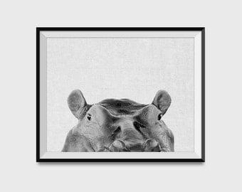 Peeking Hippo Print Wall Art Poster - Hippopotamus Poster - Hippo Print - Home Decor - Funny Animal Wall Art Print