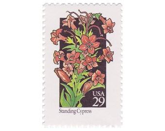 5 Unused Vintage Postage Stamps - 1992 29c Wildflower Series - Standing Cypress - Item No. 2695