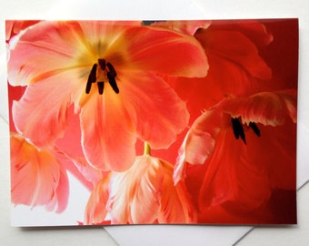 Mother's Day Floral Card - Tulip Greeting Card - Mother's Day Card - Birthday Card - Just Because Greeting Card