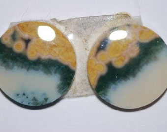 Pair of round Ocean Jasper Cabs, 14 mm diameter, tan green, white, orbicular jasper