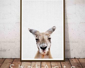 Kangaroo Print, Animal Pictures, Australian Animal Wall Art, Printable Kids Room Large Poster, animal photography, Kangaroo Nursery Art