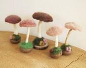 Cream Mushrooms Set of Felt Mushroom in choco brown, caramel and cream - Home Spring Decor