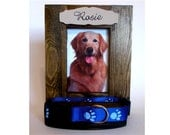 Pet Collar Frame Display