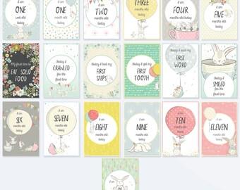 19 Bunny Baby Milestone Cards - Baby MIlestone Signs - Set of 19 Gender Neutral Milsestone Cards - Bunny
