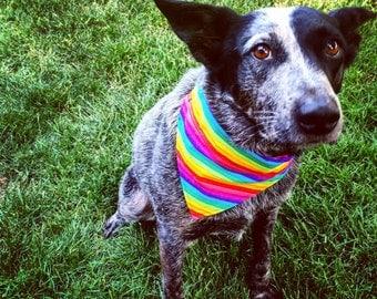 Peace, Love & Pride - Dog Bandana