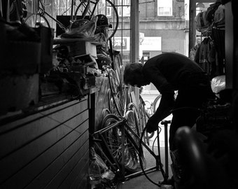 High Park Cycles #2