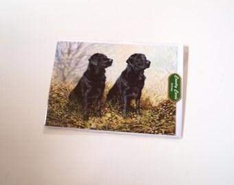 Black Labradors Birthday Card