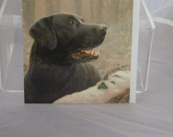 Faithful Companion Card