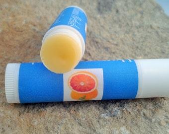 Orange Sherbet Lip Balm - Set of 5 - Organic lip balm - dry skin relief - moisturizing lip balm - organic skincare - herbal lip balm