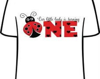 Ladybug One personalized birthday party shirts