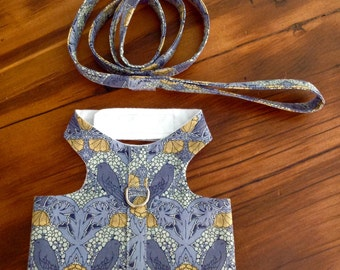 Large Harness With Matching Leash Bluebirds