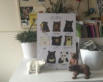 Bears A4 print
