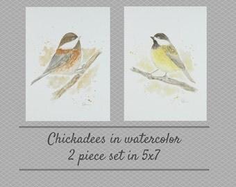 Chickadees in watercolor