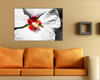 Flower Home Decor, Metal Wall Art, Flower Photography Print, Botanical Photography, Flower Art, Nature Photos, Gifts for Her, Flower Close