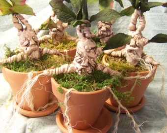 Mandrake Root ( hand sculpted)