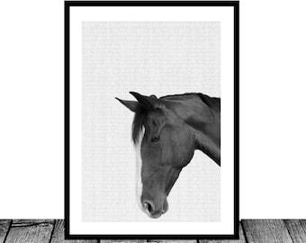 Horse Photo, Black and White Photography, Horse Print Wall Art, Icelandic Horse, Wilderness Print, Equestrian Art, Printable Art
