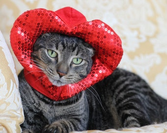 Valentine hat for cats and dogs