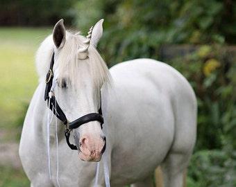 Unicorn Horn for Horse or Pony: unicorn costume, photoshoot prop