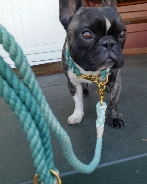 Teal Ombré Rope Dog Leash