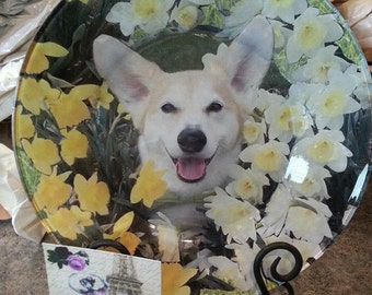 Your pet decoupaged with flowers on a decorative glass plate.