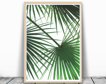 Tropical Leaf Print, Palm Tree Print, Palm Leaf Print, Palm Tree Art, Wall Art, Green Wall Decor, Tropical Art, Palm tree printable, Digital
