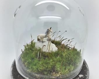 Unicorn Cloche Terrarium/ Unicorn mood moss terrarium kit/ Terrarium kit/ living home decor/ green gift