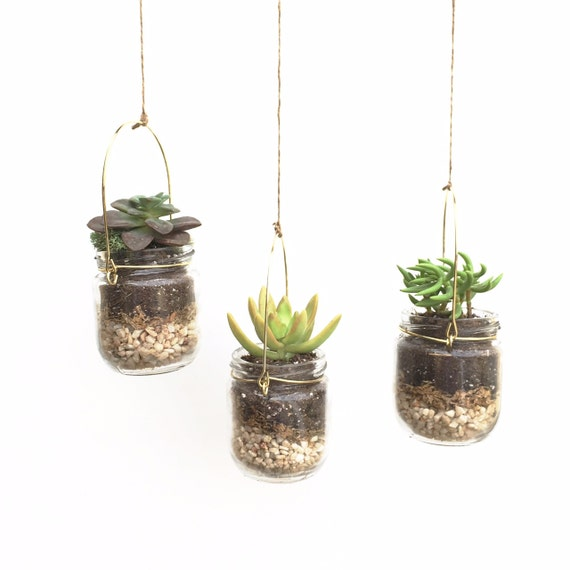 items similar to hanging terrarium diy terrarium kit succulent terrarium jar terrarium diy. Black Bedroom Furniture Sets. Home Design Ideas