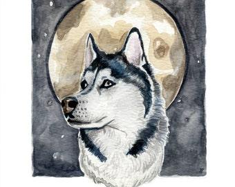 Siberian Wolf Print A5 - Luka Illustration