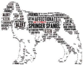 Framed Springer Spaniel Word Art Print