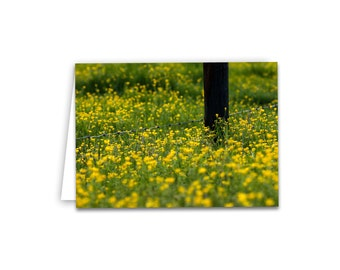 Field of Yellow Wildflowers Note Cards 5x7 Blank Greeting Card Flower Photography Photo Card with envelope