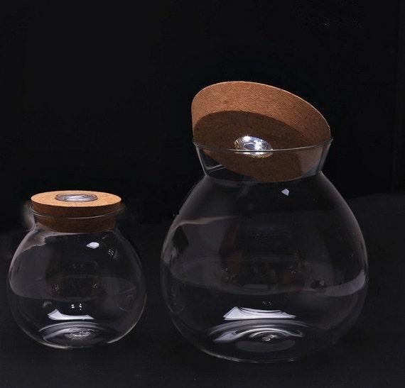 bocal en verre 4 terrarium globe 6 pouces ronde verre bol. Black Bedroom Furniture Sets. Home Design Ideas