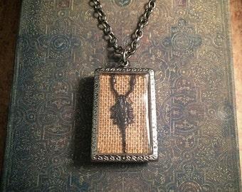 Preserved scorpion terrarium necklace / real scorpion / taxidermy necklace / gothic necklace / taxidermy scorpion / animal bone necklace