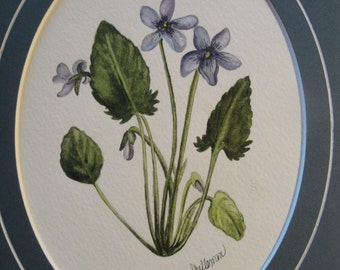 "Watercolor print ""Wild Violets"""