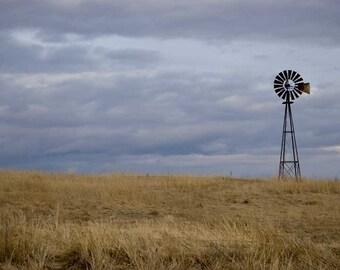 Vermont Prairie