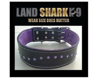Black Leather Dog Collar with Soft Purple Suede Lining & Purple Crystals