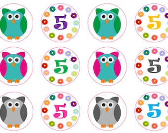 Owl Cupcake Toppers, 5th Birthday Toppers, Edible Prints, Owl Party, Girls Birthday, Wafer Paper, Icing Paper, Custom Toppers,