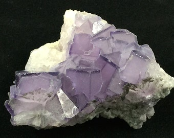 Purple Fluorite Crystal Cluster Petite and Pretty
