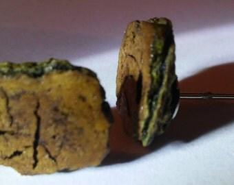 hackberry tree cork earrings