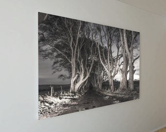 A3 Canvas Print - The Dark Hedges, Co.Antrim, Northern Ireland - Game of Thrones - Fine Art - Poster - Print
